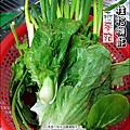 2013-0213-桂格機能燕麥麵 (9)
