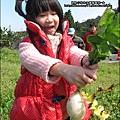 2013-0216-Yuki 5Y1M第一次拔蘿蔔 (10)