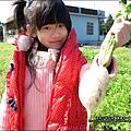2013-0216-Yuki 5Y1M第一次拔蘿蔔 (17)