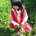 2013-0216-Yuki 5Y1M第一次拔蘿蔔 (21)