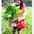 2013-0216-Yuki 5Y1M第一次拔蘿蔔 (25)