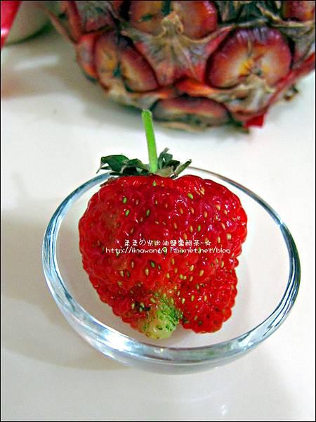 2013-0309-在家DIY種草莓 (1)
