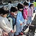 2012-1212-幼稚園中班上學期-農場生活-Yuki 4Y11M-戶外教學-巷弄田園 (1)