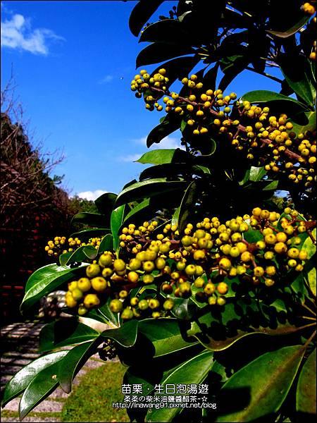 2013-0111-0112-石壁溫泉渡假山莊-慶生會 (19)
