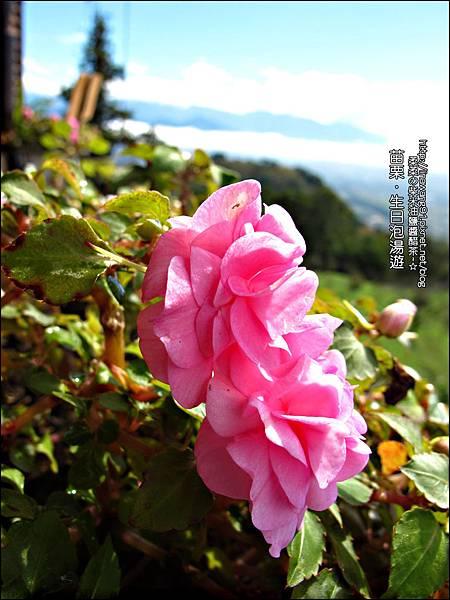 2013-0112-苗栗大湖-薑麻園-雲也居一-雲洞仙居 (4)