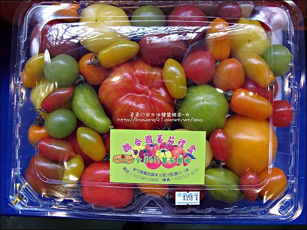 2012-0329-新竹關西-金勇DIY蕃茄農場 (12)