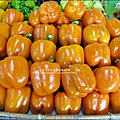 2012-0329-新竹關西-金勇DIY蕃茄農場 (13)