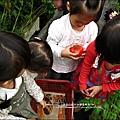 2012-0329-新竹關西-金勇DIY蕃茄農場 (20)