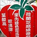 2012-0329-新竹關西-金勇DIY蕃茄農場 (19)