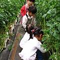 2012-0329-新竹關西-金勇DIY蕃茄農場 (21)