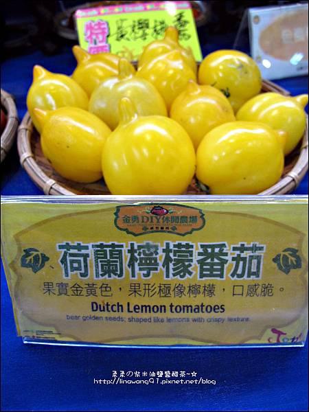 2012-0329-新竹關西-金勇DIY蕃茄農場 (29)