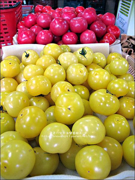 2012-0329-新竹關西-金勇DIY蕃茄農場 (33)