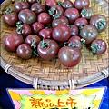 2012-0329-新竹關西-金勇DIY蕃茄農場 (34)