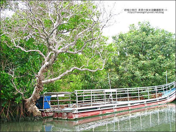 2012-1209-台南-四草紅樹林綠色隧道 (17).jpg