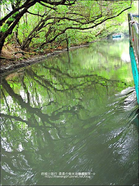 2012-1209-台南-四草紅樹林綠色隧道 (20).jpg