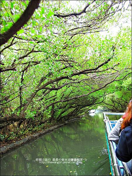2012-1209-台南-四草紅樹林綠色隧道 (21).jpg