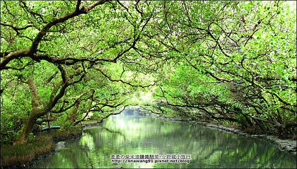 2012-1209-台南-四草紅樹林綠色隧道 (24).jpg
