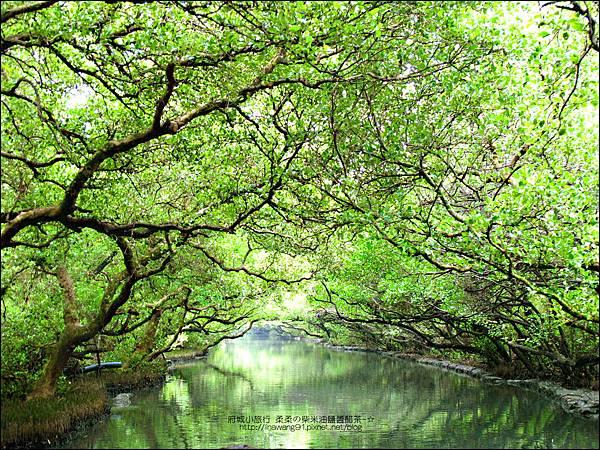 2012-1209-台南-四草紅樹林綠色隧道 (25).jpg