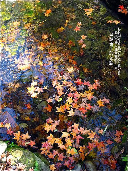 2014-0101-桃園-角板山公園 (7).jpg