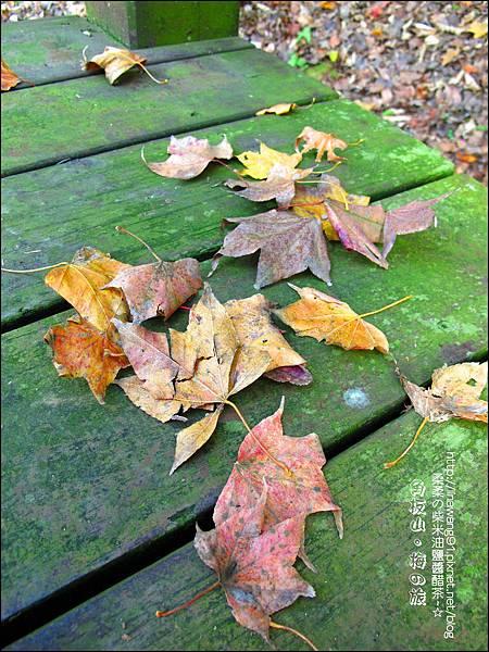 2014-0101-桃園-角板山公園 (10).jpg