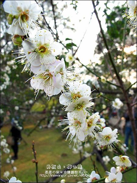 2014-0101-桃園-角板山公園 (18).jpg