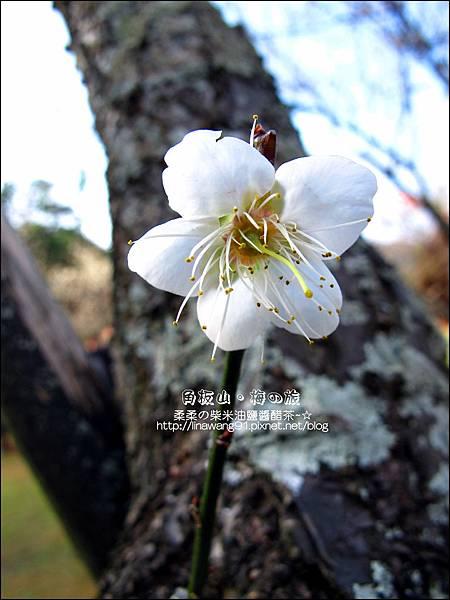 2014-0101-桃園-角板山公園 (19).jpg