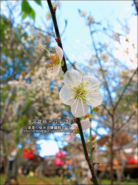 2014-0101-桃園-角板山公園 (22).jpg