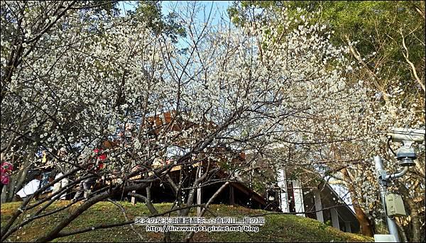 2014-0101-桃園-角板山公園 (23).jpg