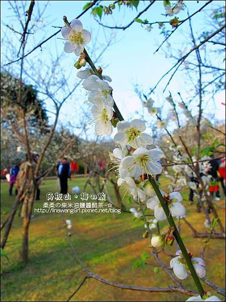 2014-0101-桃園-角板山公園 (28).jpg