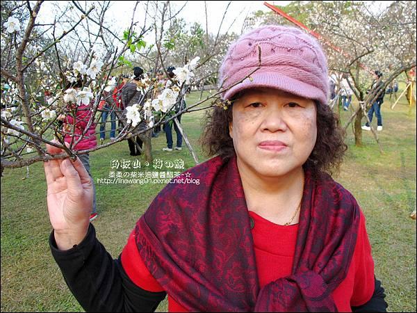 2014-0101-桃園-角板山公園 (29).jpg
