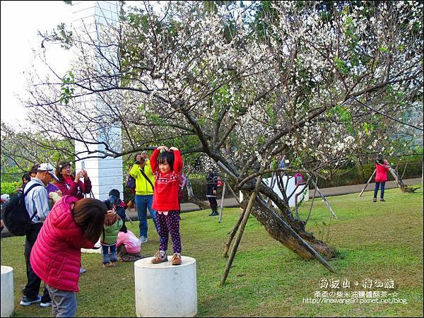 2014-0101-桃園-角板山公園 (31).jpg