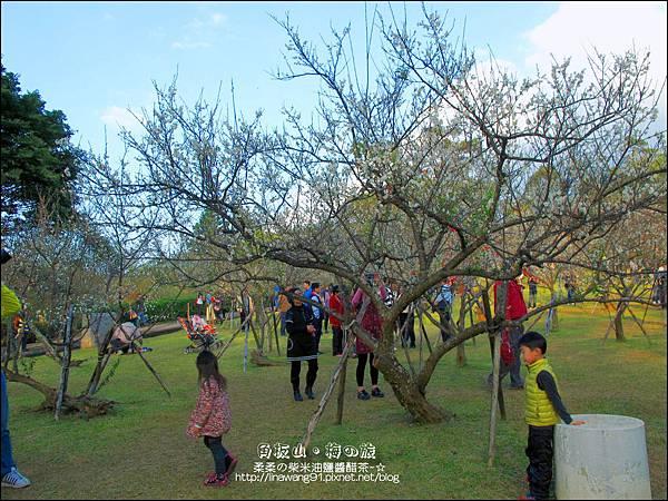 2014-0101-桃園-角板山公園 (32).jpg