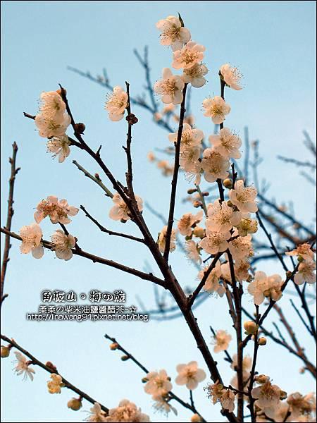 2014-0101-桃園-角板山公園 (33).jpg