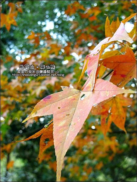 2014-0101-桃園-角板山公園 (41).jpg