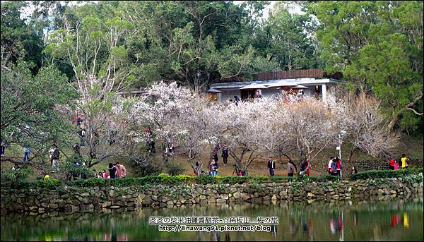 2014-0101-桃園-角板山公園 (42).jpg