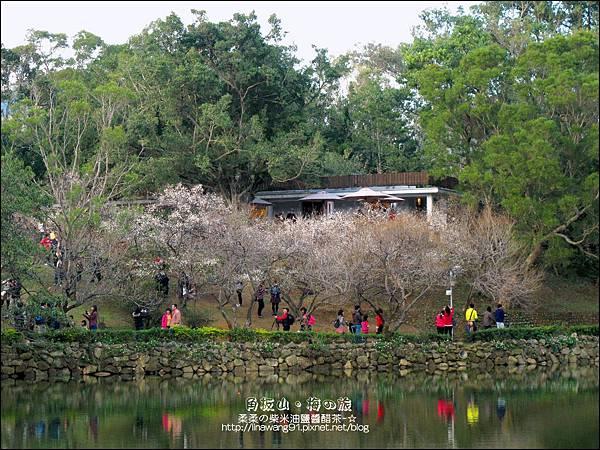 2014-0101-桃園-角板山公園 (43).jpg
