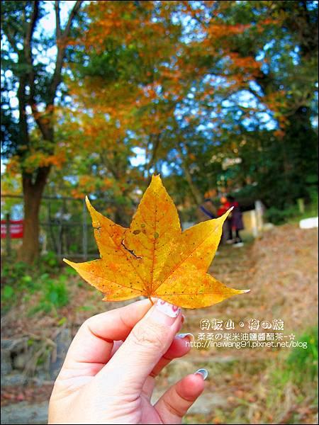 2014-0101-桃園-角板山公園 (45).jpg