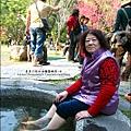 2014-0131-谷關溫泉公園 (4).jpg