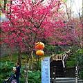 2014-0131-谷關溫泉公園 (10).jpg