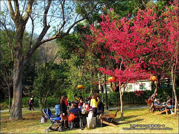 2014-0131-谷關溫泉公園 (13).jpg