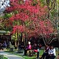 2014-0131-谷關溫泉公園 (20).jpg