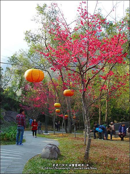 2014-0131-谷關溫泉公園 (22).jpg