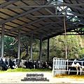 2013-1221-苗栗-泉井牧場-Yuki慶6歲生日 (34).jpg