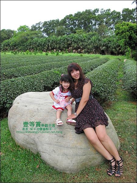 2010-0806-壹等賞景觀茶園 (26).jpg