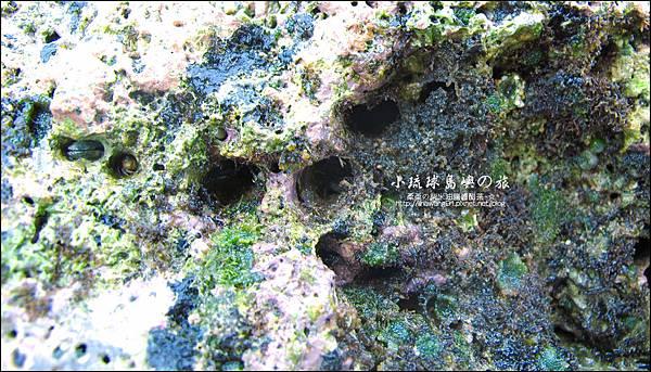 2014-0526-屏東-小琉球-花瓶岩 (13).jpg