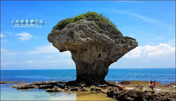 2014-0526-屏東-小琉球-花瓶岩 (25).jpg