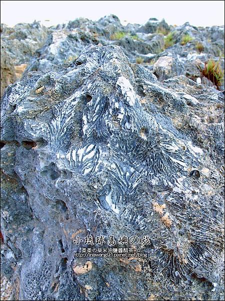 2014-0525-小琉球-厚石群礁 (4).jpg
