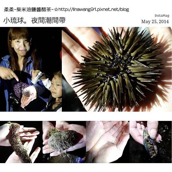2014-0525-屏東-小琉球-夜間潮間帶 (1).jpg
