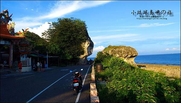 2014-0525-屏東-小琉球-紅番石 (1).jpg