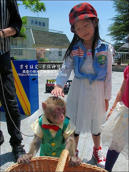 2014-0502-日本-神戶-北野町異人館-風見雞館 (2).jpg